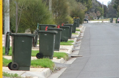 bins for collection.jpg