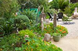 2017_mayors_garden_competition_winner_jane_baddock_open_residential.jpg