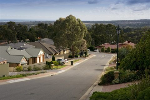 A suburban residential street in the City of Onkaparinga, surrounded by trees.